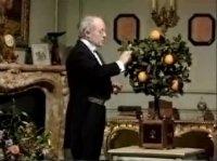 Robert-Houdin e a laranjeira