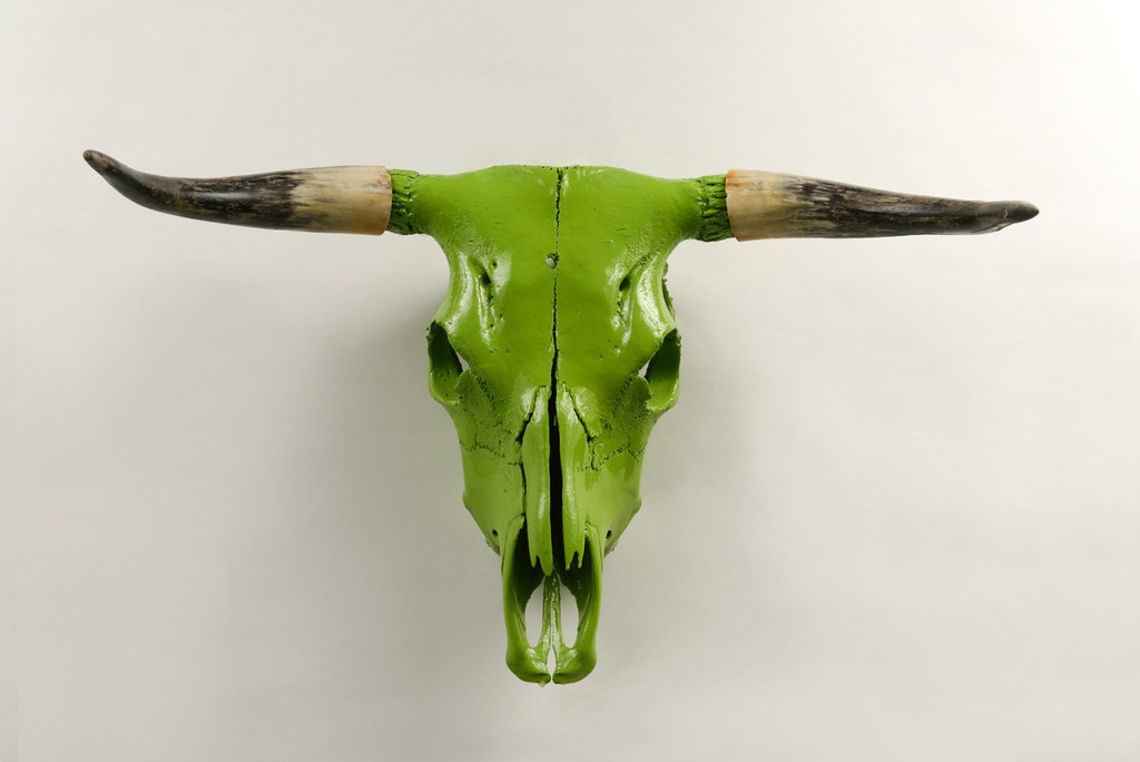 stephan-alexandr-bull-1