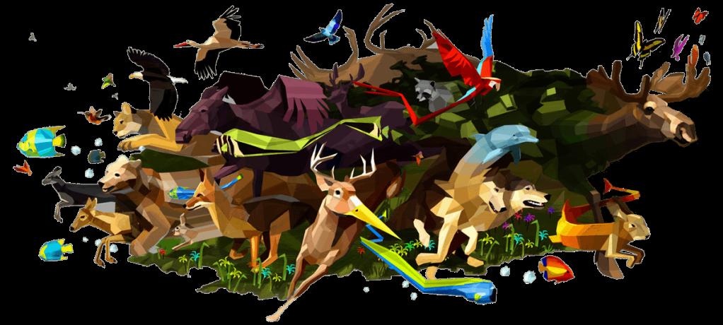 rome-animals
